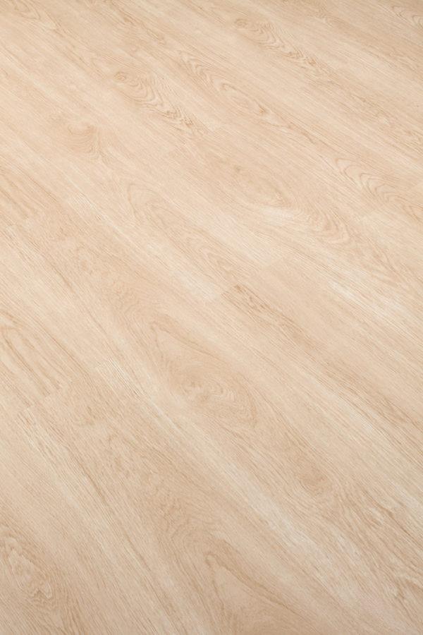 snow-oak-wood