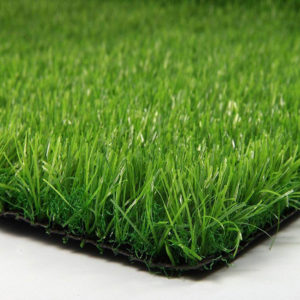 fresh-25-grass-300x300.jpg