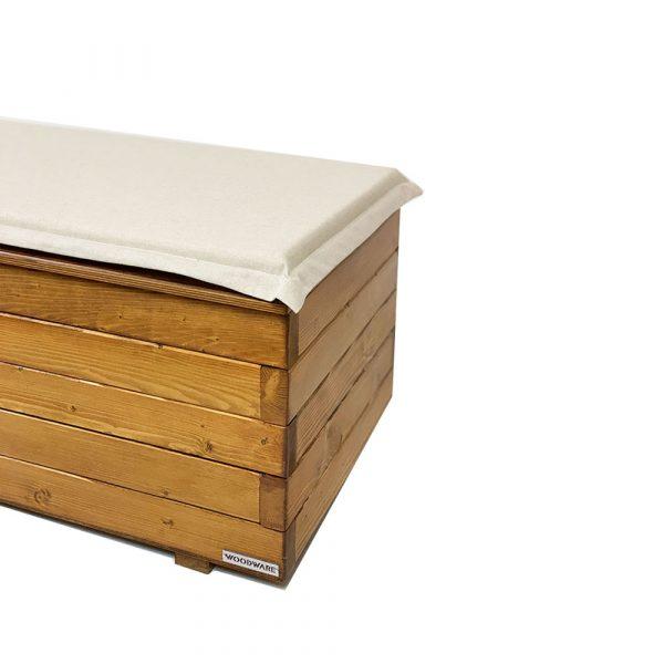 100x50-cushionaa